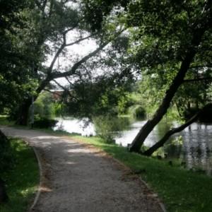 Wakacyjny Miejski Park Rodzinny wRedzie