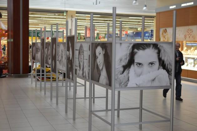 Auchan wystawa
