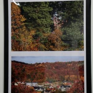 """Wystawa """"Barwy Redy. Miasto Reda wkolorach jesieni"""""""