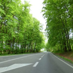 Uwaga – roboty drogowe naRekowskiej Górce