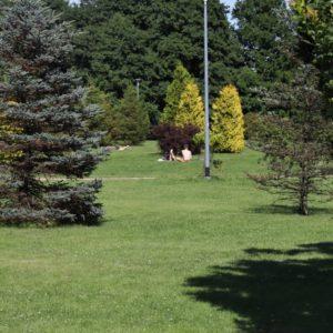 Niedziela wRodzinnym Parku Miejskim